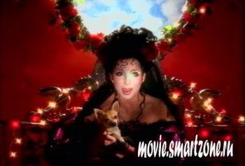 Cher - The Video Hits Collection (2004) DVDRip