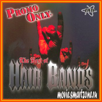 VA - Promo Only Best Of Hair Bands Vol.1 (2006) DVDRip