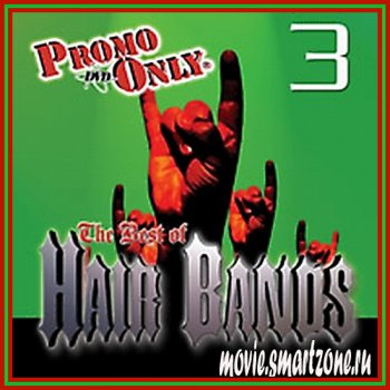 VA - Promo Only Best Of Hair Bands. Vol. 3 (2006) DVDRip